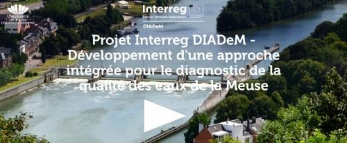 interreg Diadem