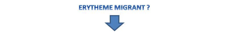 erytheme-migrant_fleche.jpg