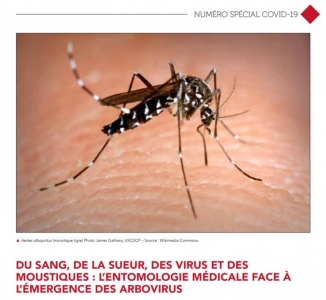 Vector-borne diseases