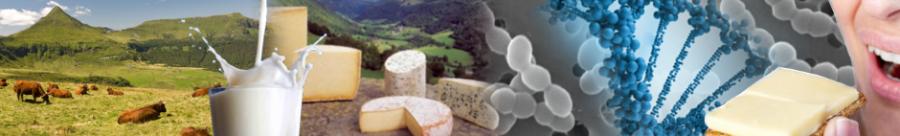 Unité Mixte de Recherche sur le Fromage