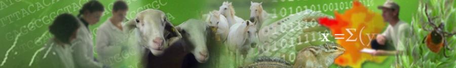 Unité Mixte de Recherche d'Epidémiologie des maladies animales et zoonotiques (UMR EPIA)