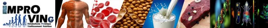 Métabolisme Protéique, Nutrition et Vieillissement